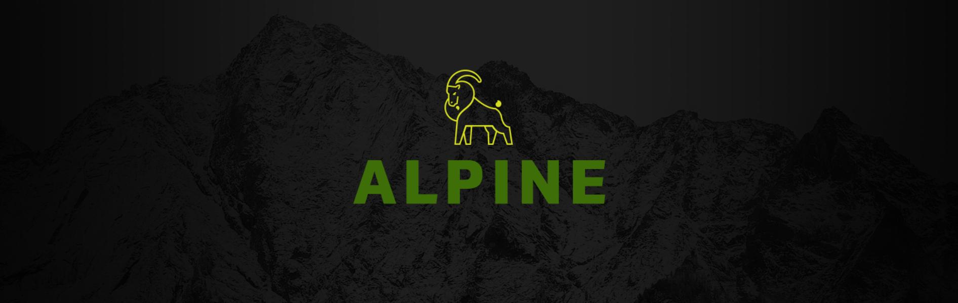 Alpine Esports Banner