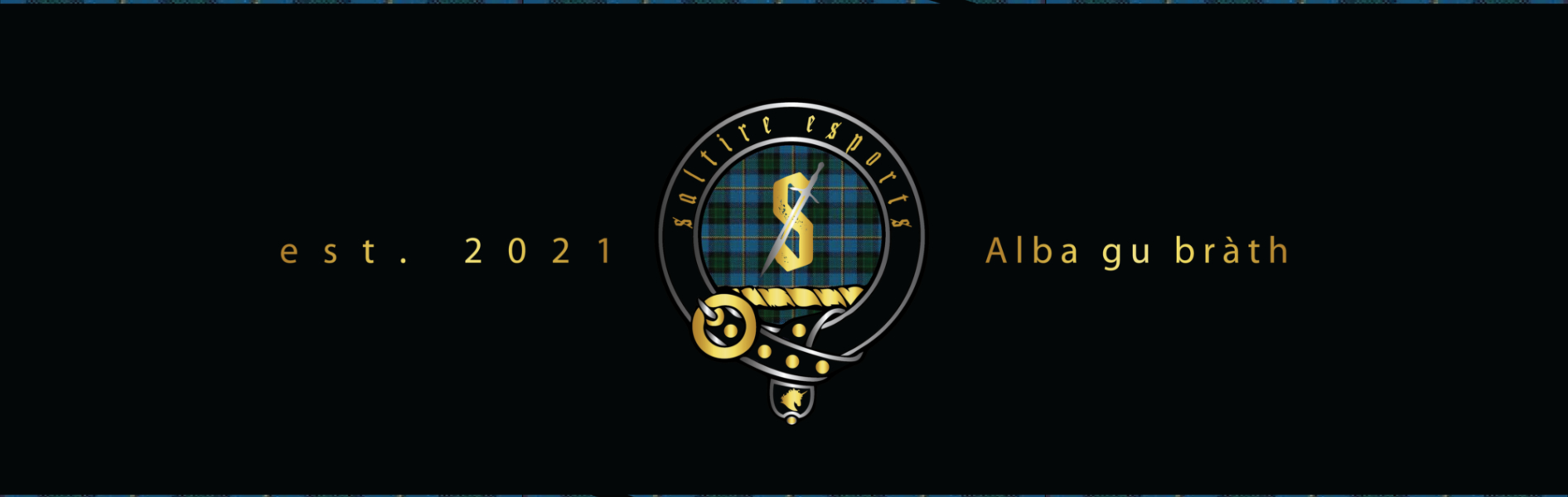 Saltire Esports Banner