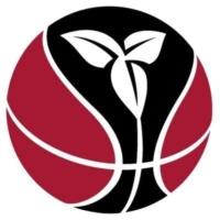 Ontario Basketball Logo