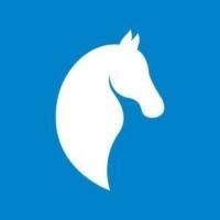 Paladin Software Logo