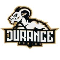 nDurance Gaming Logo