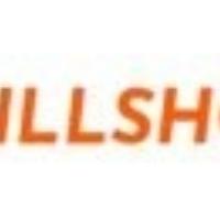 Skillshot Consulting GmbH Logo
