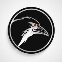 Raven Interactive Logo