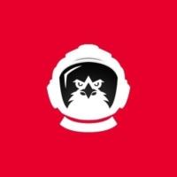 Spacehawks Logo