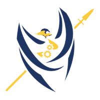 Valkyrie Robotics Logo