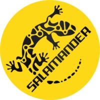 Salamander Gaming Logo