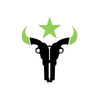 Houston Outlaws Logo