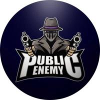 Public Enemy Esports Logo