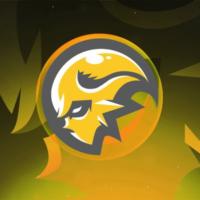 XIII Esports Logo