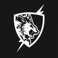 Flash Point Esports Logo